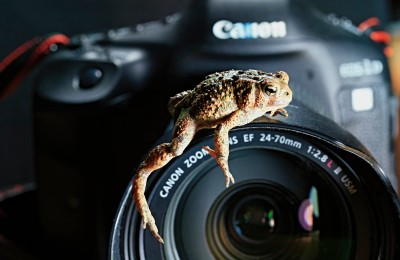 Hugging The Lens