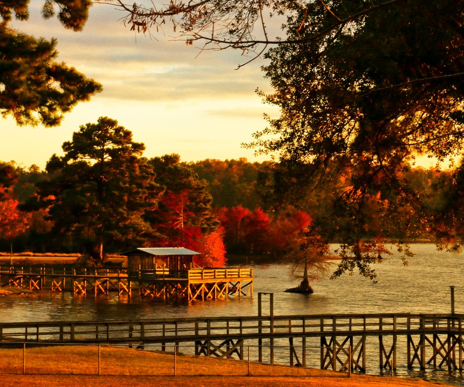 Toledo Bend Autumn