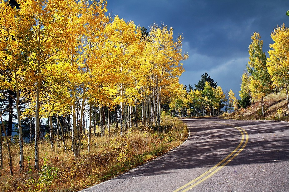 This is from a fall foliage shoot I did in 2012. I went to Golden Gate Park in Colorado. I love t...