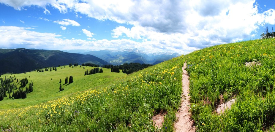 A panorama of a trail.