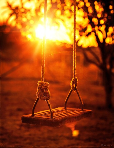 Swing of Memories...