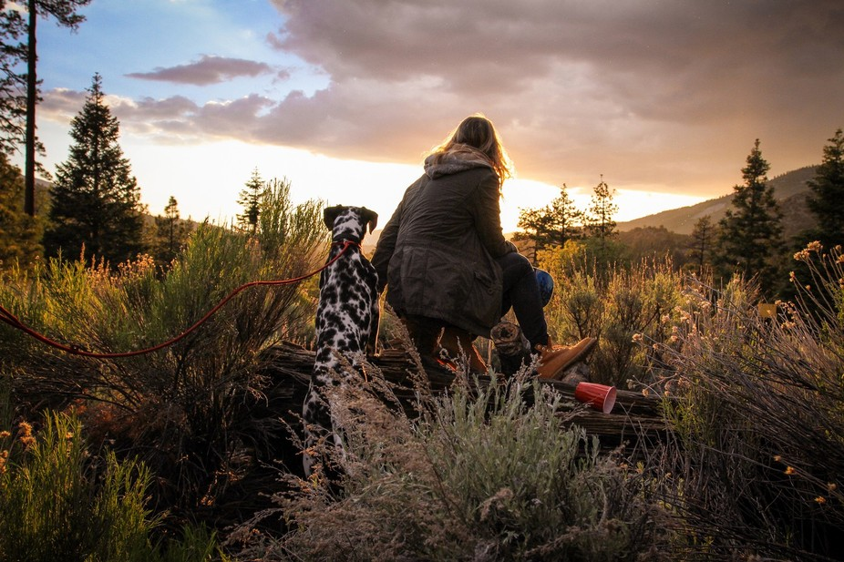After hiking, a young girl and her 3-year old dalmatian Luda watch a beautiful sunset over the fo...