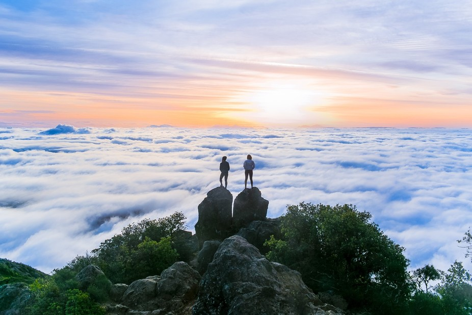 Hike to the top of Mount Tamalpais for a foggy sunrise