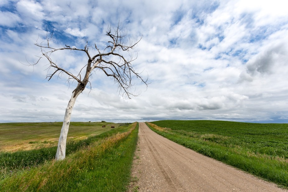 We went to North Dakota almost every summer to stay on a family friend's farm.  Many gre...
