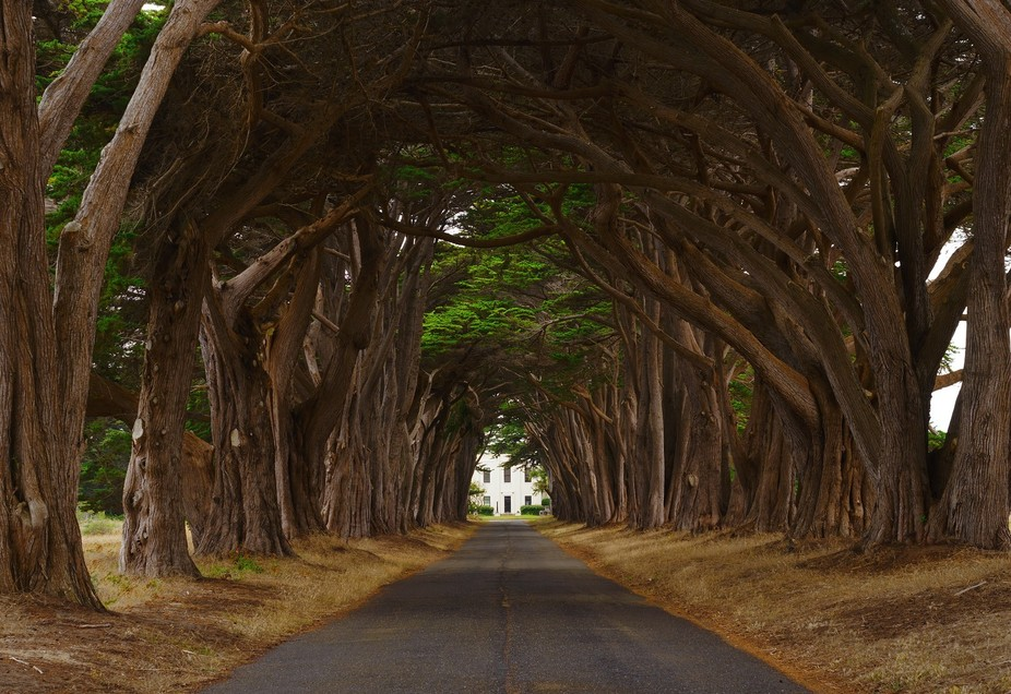 Located in Point Reyes National Seashore, California.