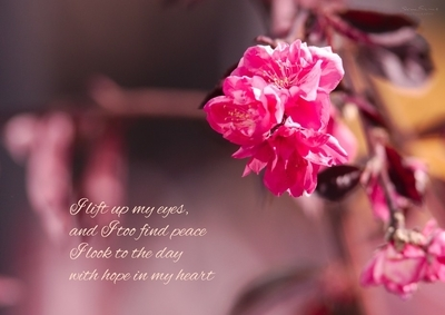 """I lift up my eyes, and I too find peace. I look to the day with hope in my heart. (from """"Saviour"""")"""
