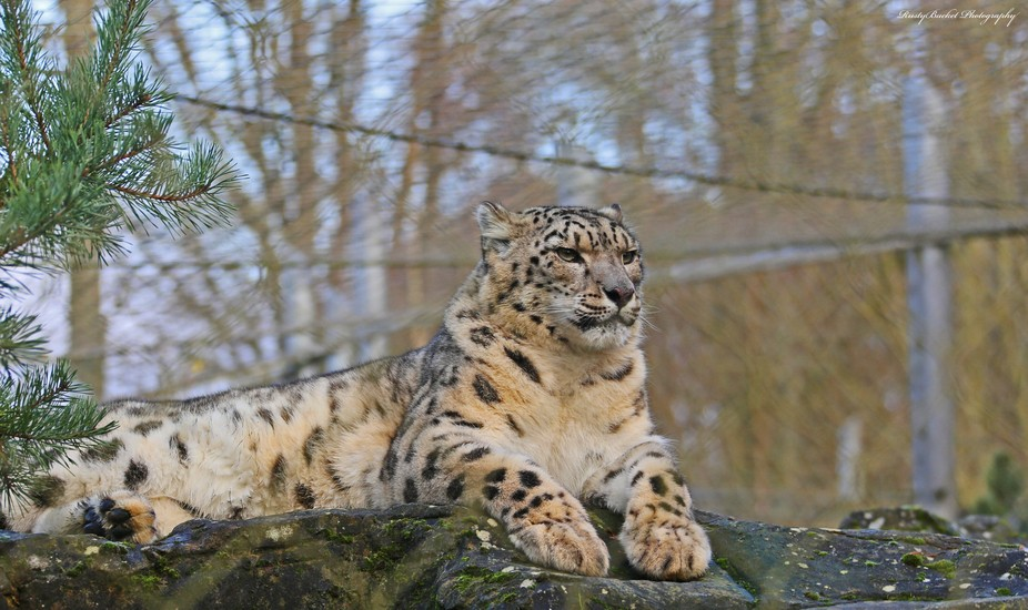 Taken at Marwell Zoo