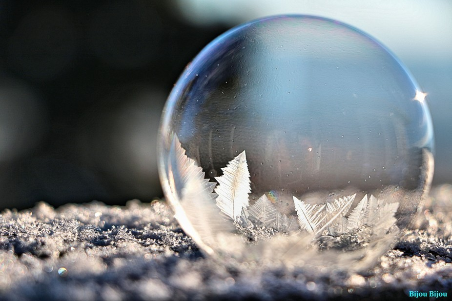 Ice Crystals on Bubble