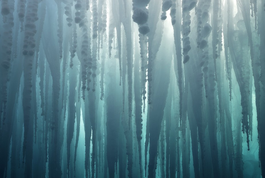 Seemingly endless layers of icicles in a small cave.