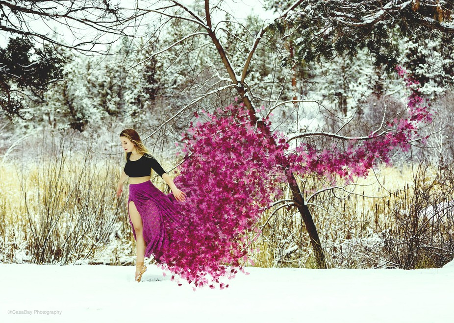 I love winter. It is my favorite season :) This was an image created during a normal family sessi...