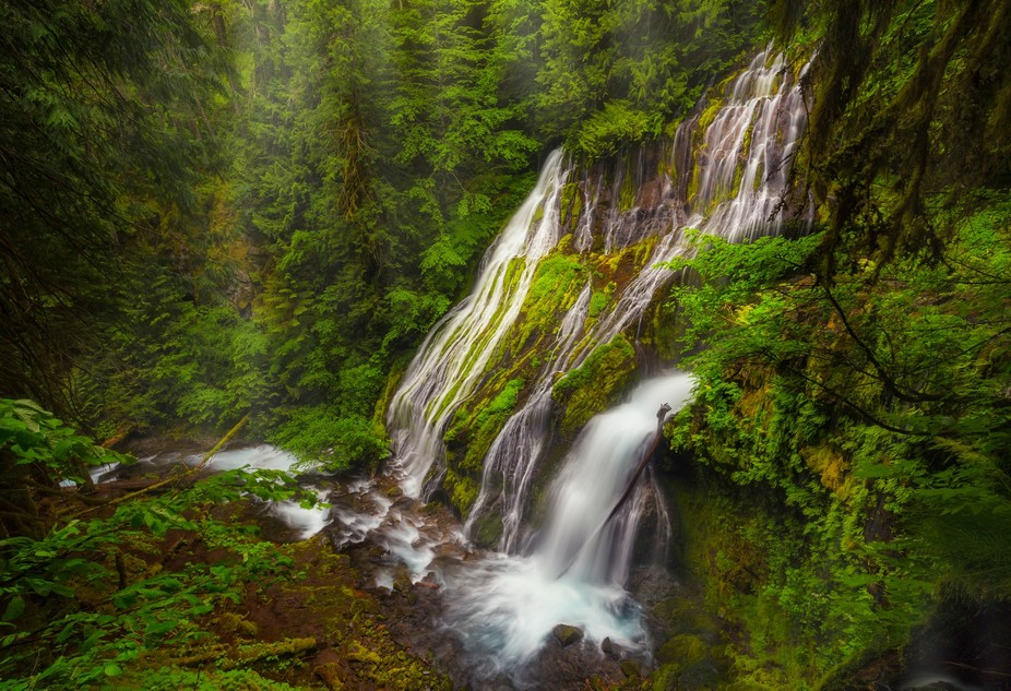 Right on the edge of the drop to a lower tier of falls, this view of Panther Creek Falls is not w...