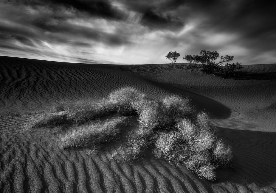 Took this shot scouting for sunset shots at Mesquite Dunes.  It is my favourite shot of 2016