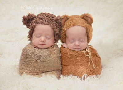 Twin teddies