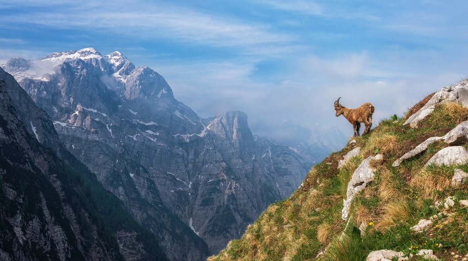 Luknja saddle offers great views over Mt. Triglav and other high peaks of Julian Alps. In the ear...