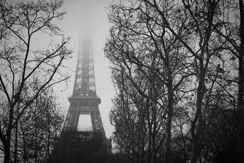 Cold day in Paris