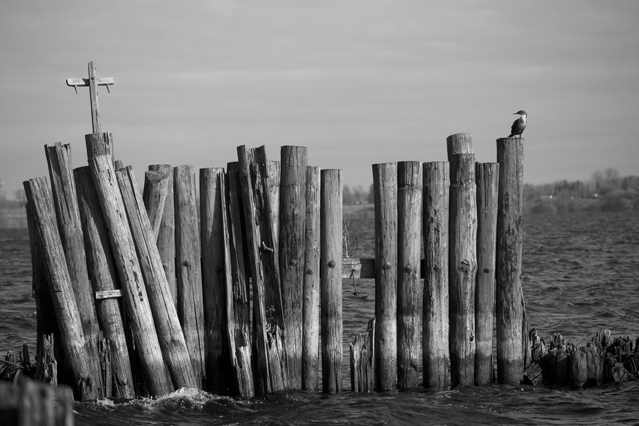 Picture taken of an old pier in the St. Laurence River.