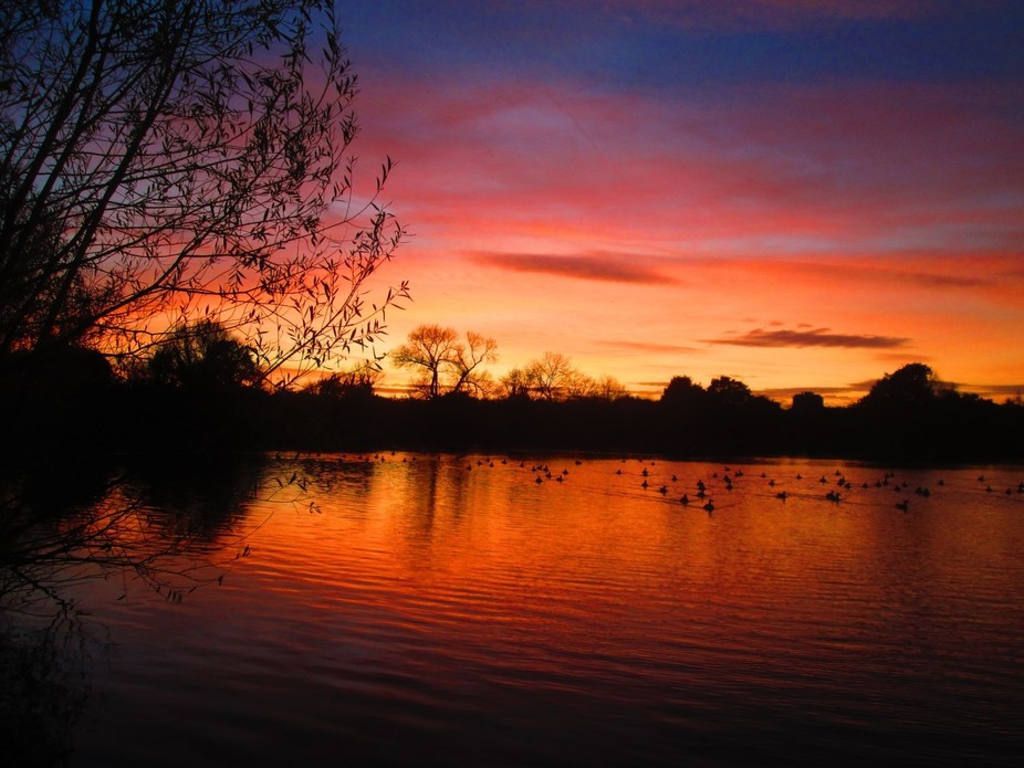 Sunset at Hainault Forest