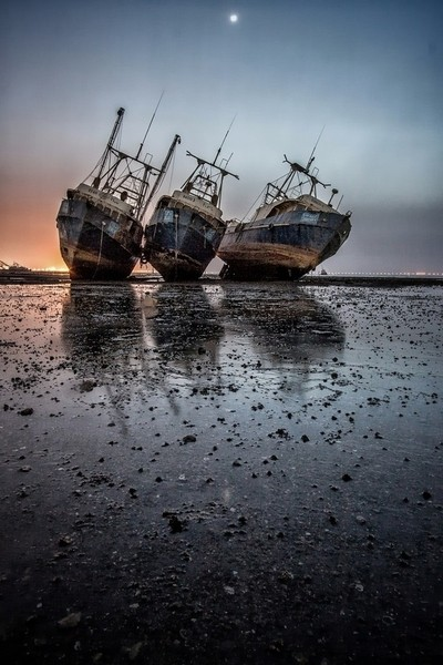 rusted ships