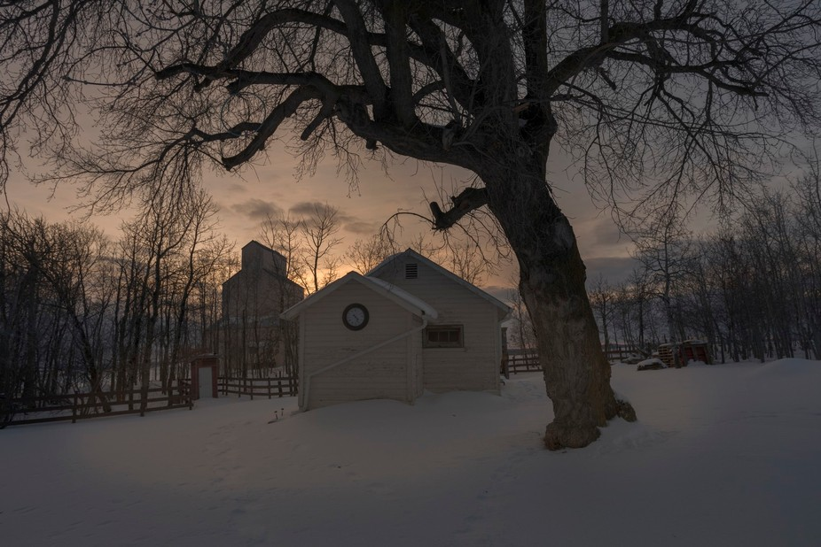 Vintage wooden Grain Elevator with vintage house and old tree silhouette on a winter's a...