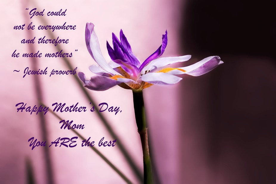 A quote by Rudyard Kipling (thank you, Gail, for the info!)  This is a Mother's Day card...