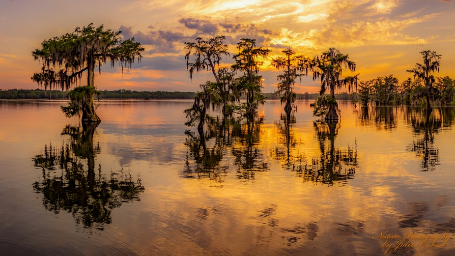 Lake Martin Golden Sunset-April 2018. When sky as a promise of a sunset and winds go calm I alway...
